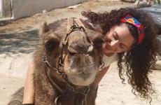 passeo en camello